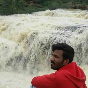 Swamy Siddalinga Travel Blogger