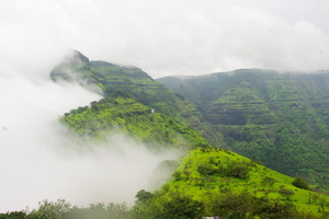 Herping in Agumbe (Western Ghats of Karnataka)