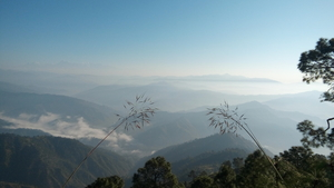 Quiet and Offbeat - Manila, Almora