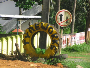 Kerala Calling-Discovering some alleys of 'God's own country': Thrissur, Munnar, Allepy and Kochi