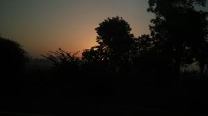 Raft to relax in Rishikesh