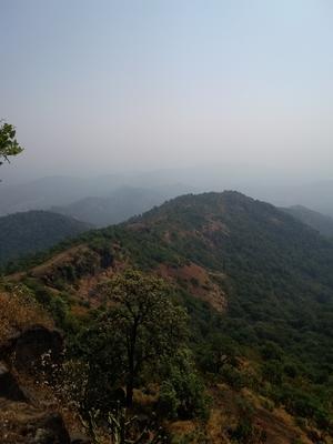 Get lost in the wilderness of Kamandurg