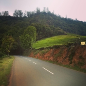 Roadtrip to Ooty