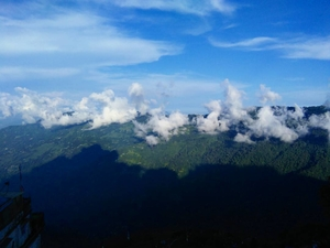 Darjeeling - Sikkim - Feel the Magical Aroma of Nature