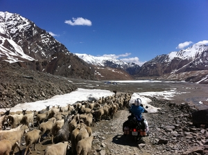Bike Trips To Ladakh