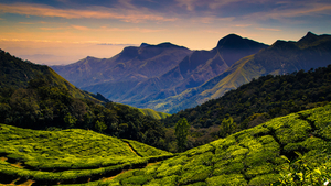 Kodaikanal - A place where you would wish to spend the rest of your life.