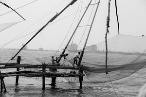 Chinese Net Fishing and Other Kochi Things