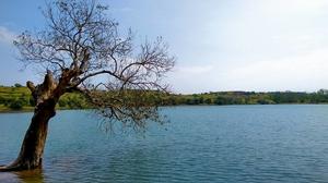 One day trek from Pune and Mumbai: Rajmachi Fort trek!!!
