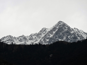 Backpacking in Mcleodganj and trek to triund