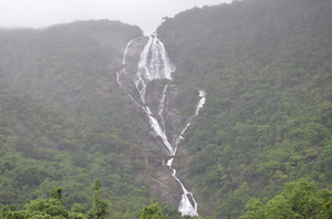 Dudhsagar Falls - An exhilarating rail trek in the picturesque Western Ghats