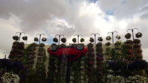 Dubai Diaries – A trip to the Miracle Garden