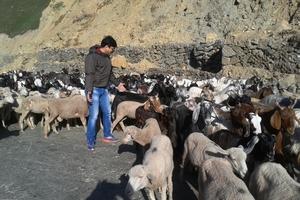 Trek on the footsteps of Mughals