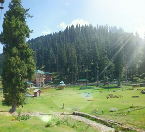 Green Meadows – Gulmarg (continuation of Kashmir part 1)