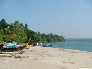 A beach, a fort, and a lesson- Malvan