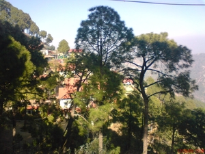 What makes Kasauli a perfect weekend spot?