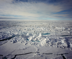 3 Reasons why You Should Travel to the North Pole