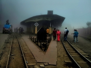 Tea, Turf and Toy Train: Darjeeling