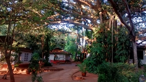 And Auroville happened!