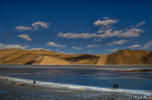 A solo trip to Ladakh in Winters