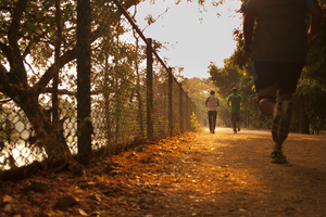 Top 3 places to Walk/run/cycle in Mysore