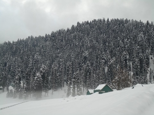 Skiing and Gulmarg go hand in hand