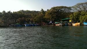 Exotic Goa