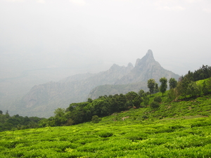 Kotagiri- Where Blue Mountains Turn Green