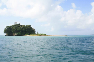 Andamans: Discovering the Jarwa land