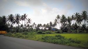 Goa on my own - Beyond the beaches