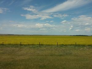 Powering Through the Canadian Prairies