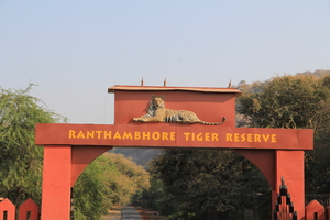 Ranthambhore - The land of the Tiger