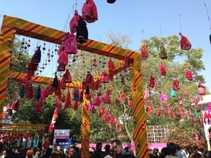 The Bibliophile's Paradise: Jaipur Literature Festival