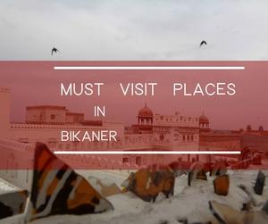 Bikaner : Beyond Bhujias and Forts