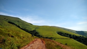 Chikmagalur – Where the grass is always greener!