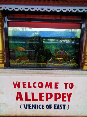 Kerala Diaries-> Alleppey - Kumarakom