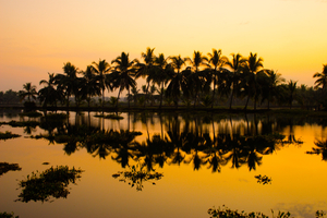 A Taste of Kerala : A Road Bike Tour