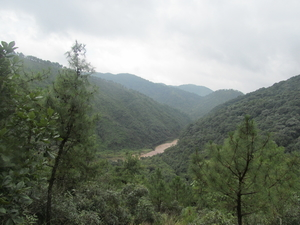 SOLO Trekking: David Scott Trail