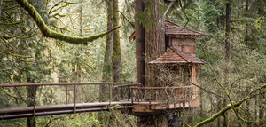8 Amazing Tree Houses From Around The World That Are So Cool You'll Want To Stay Forever
