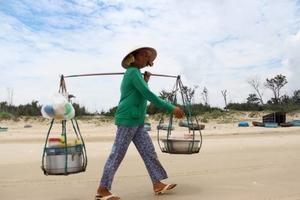 Vietnam: A Vagabond's Tale