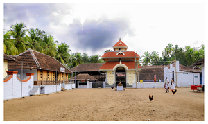 A 'Rooster Temple' In Kerala, India - Something Truly Unique