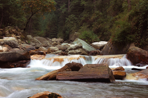 A Short Getaway to Parvati Valley, Himachal