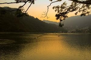 Pangot: A Hidden Retreat In The Himalayas