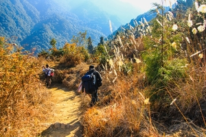 12 images that will tempt you to trek on Sandakphu – Phalut route in winter
