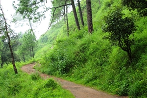 Kasauli – For that much needed peace of mind