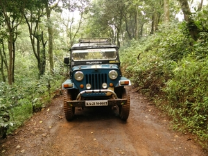 Kodachadri place for trekking, off roading only 4x4, A natural heritage!!!