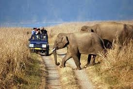 Corbett: Nature at its Best