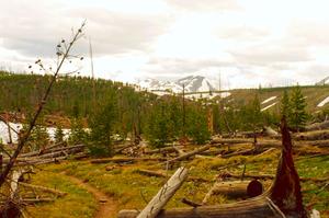 Weekend Getaways: Yellowstone National Park