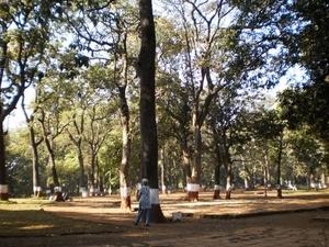 Trek to Tikona Fort, Lonavla, Maharashatra