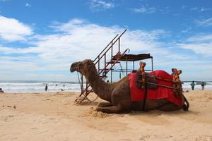 Going offbeat in Coastal Karnataka
