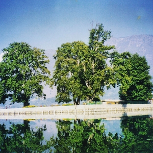 Kashmir - A trip to Heaven